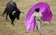 cartel-de-toros-de-la-feria-de-fallas-2020-en-valencia